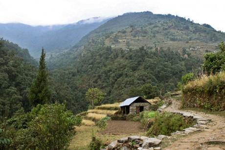 Юлия Коктыш. Фототур в Непале 1