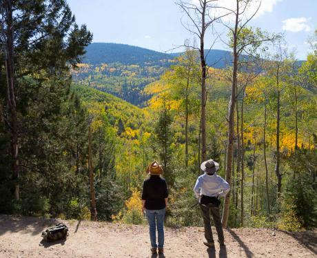 Fall Colors, Santa Fe. (c) Beverley Sinclair