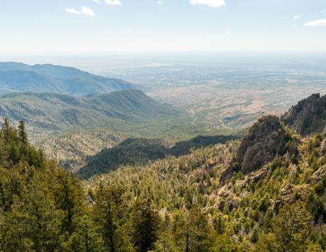 Albuquerue Mountains. (c) Meghan Lambert