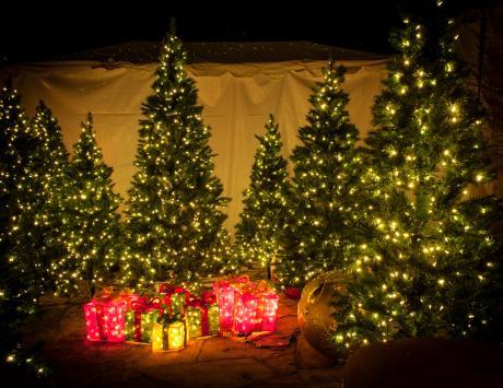Christmas at Canyon Road. (c) Igor Skibenko